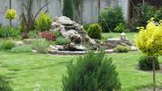 Ландшафтный дизайн. Озеленение