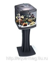Полностью готовый аквариум с рыбками
