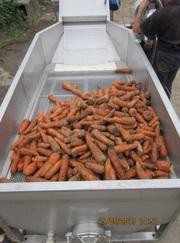 Ванна  для отмачивания овощей и корнеплодов от засохшей земли.