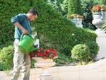 Садовник квалифицированный требуется