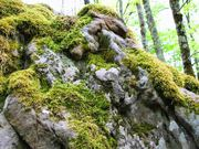 Природный камень и изделия из него от производителя