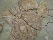 Камень Шкура тигра натуральный песчаник пластушка
