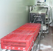 Сушка ящиков и лотков на пищевом производстве