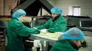 Рабочие На Фабрику Сортировки Овощей и Фруктов в Польше