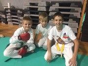 Спорт Борьба боевые искусства Западные ворота Ростов